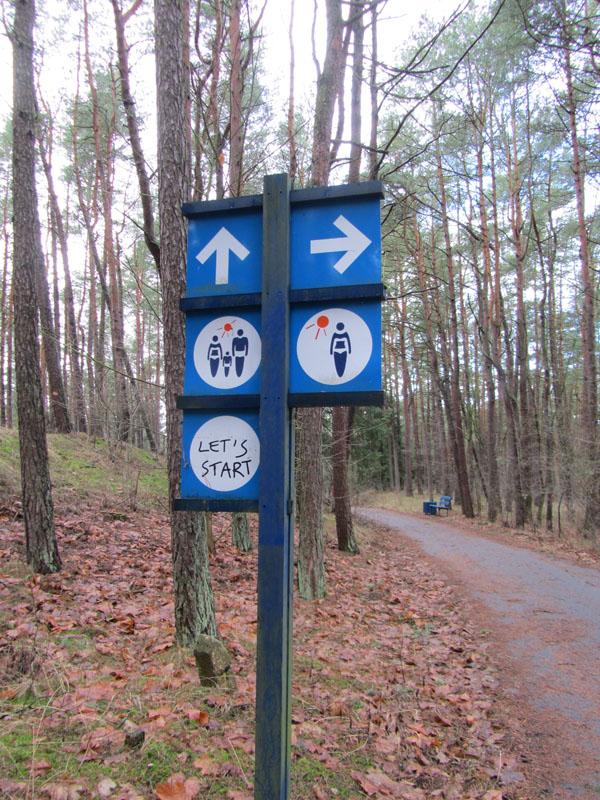 Правильный указатель в парке на Курсшкой косе