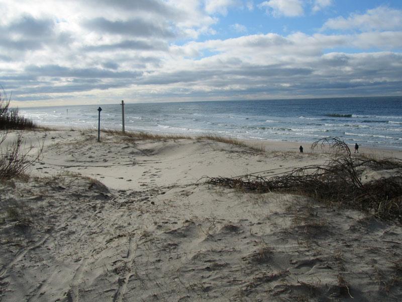 Вид на пляж на Куршской косе