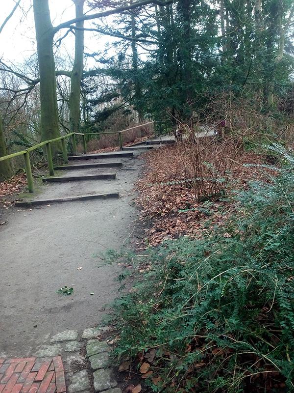 Парк около замка