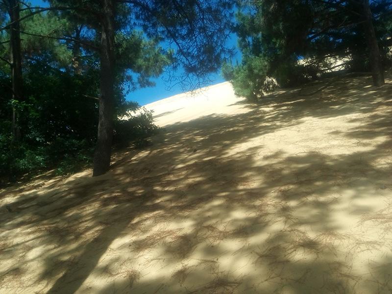 dune_de_15